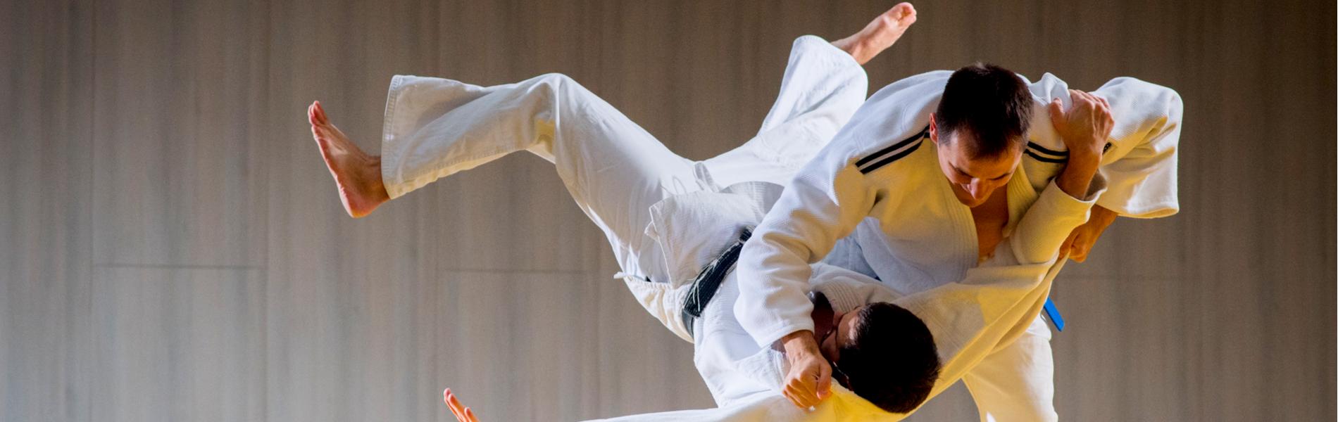 Private Lessons Martial Arts School