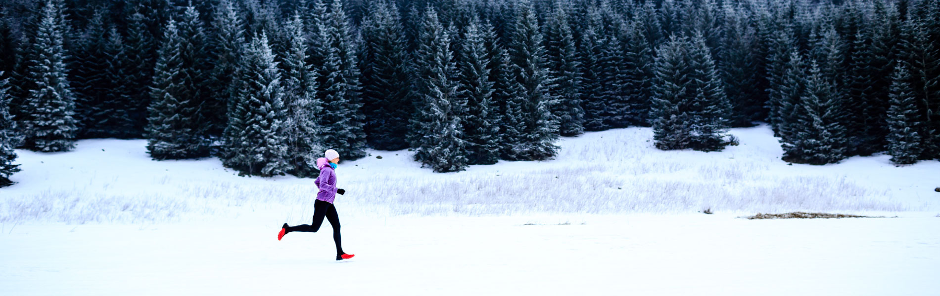 Activate_Dont_Hibernate_with_Winter_Activities_to_Keep_You_Fit_1900x600.jpg