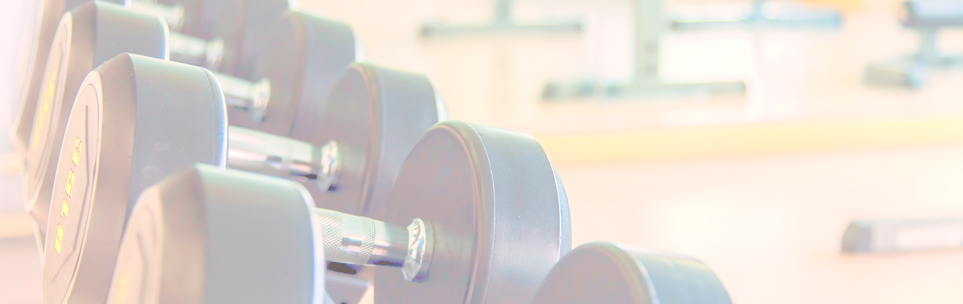 Choosing-Equipment-for-Your-Indoor-Fitness-Facility_1900x600.jpg