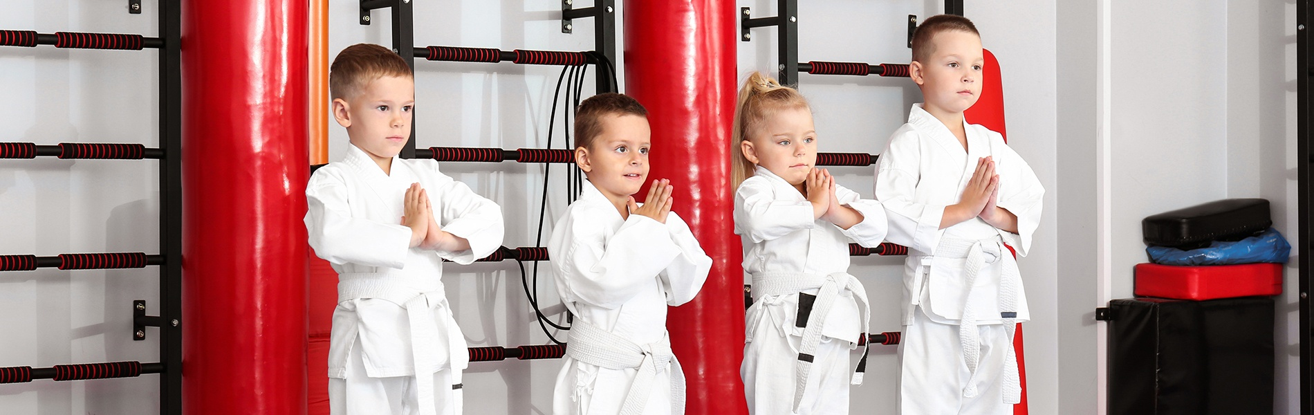 Create and Launch A Successful Parent and Child Martial Arts Program