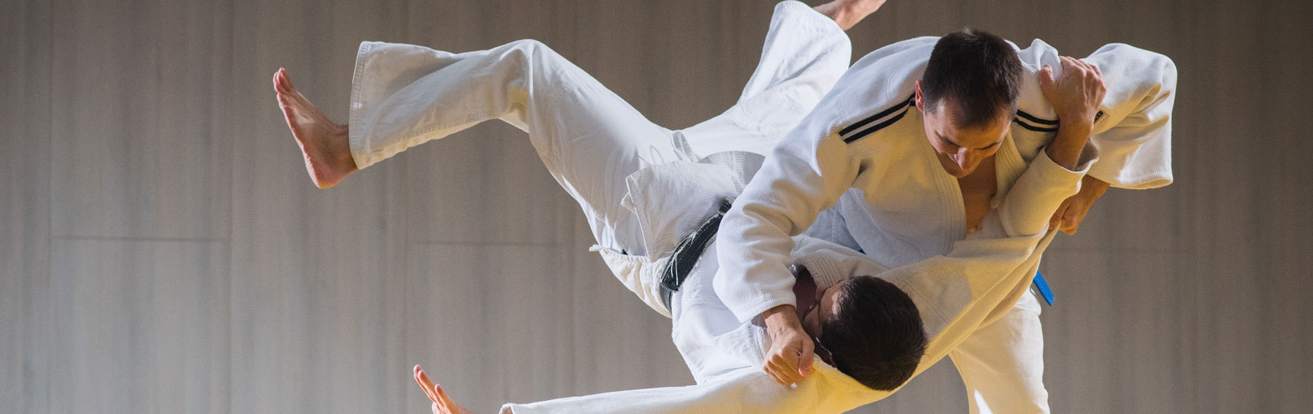 What is Hapkido?