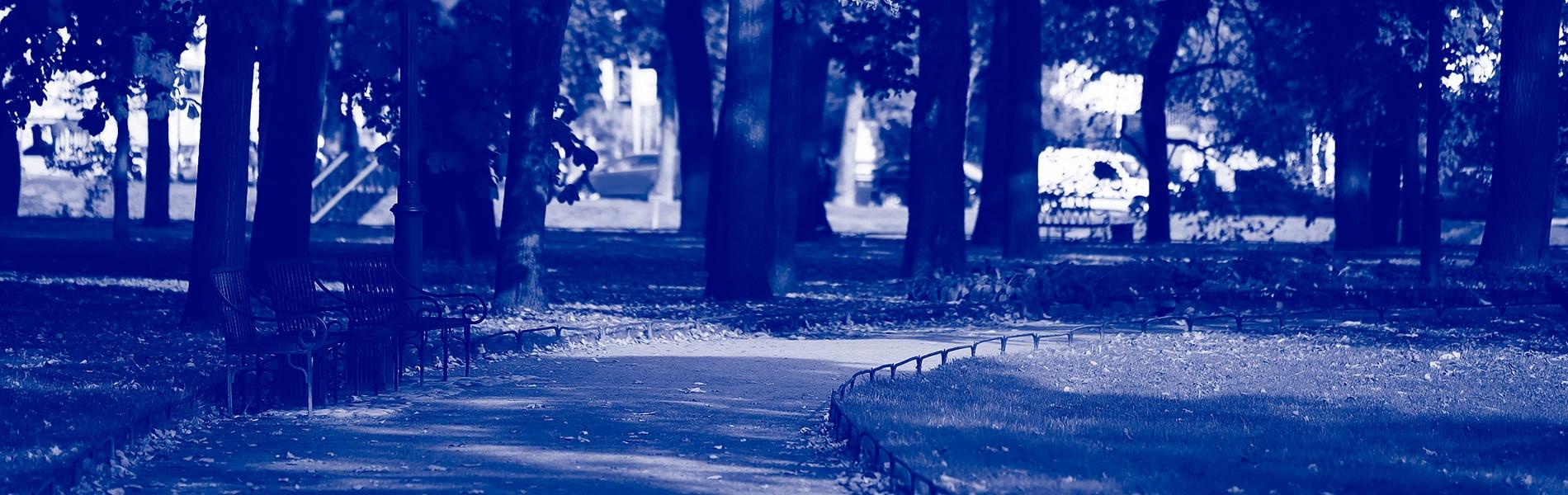 socialvictory-perfectmind-championsway_park_conservation1900x600.jpg