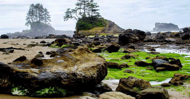 5 bucket list hikes - west coast trail, bc
