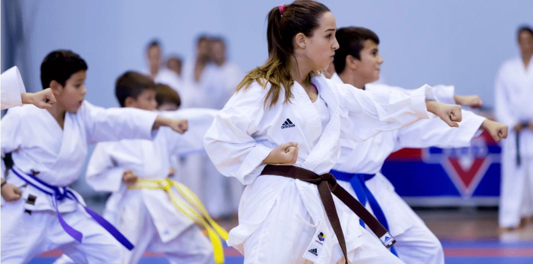 Martial arts retention strategy -Understand student behaviour