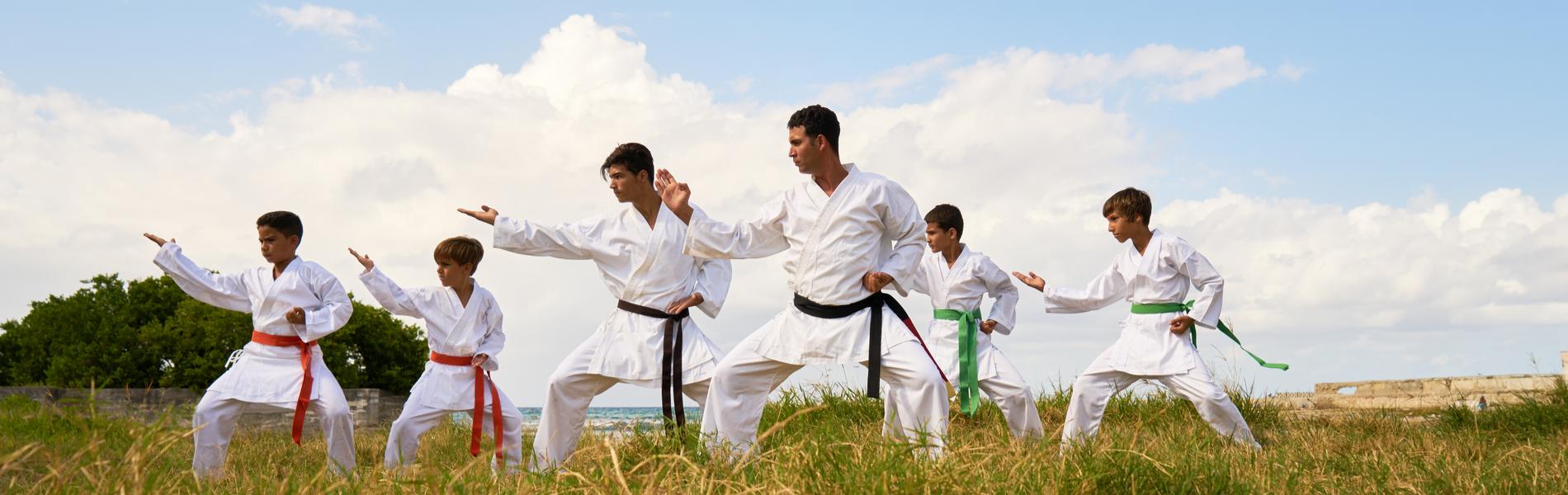 martial arts community events