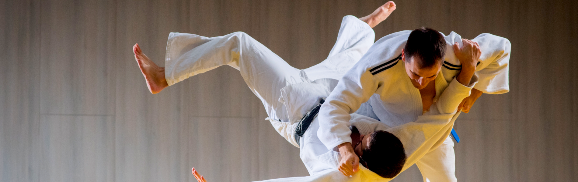 Using Private Lessons to Grow and Improve your Martial Arts School