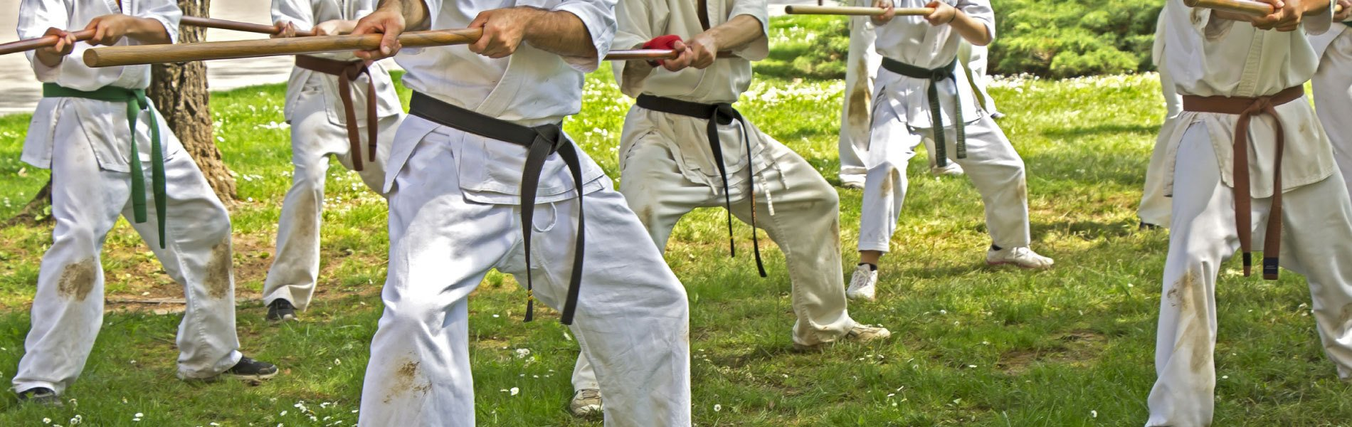 How your School can Participate in Martial Arts Community Events