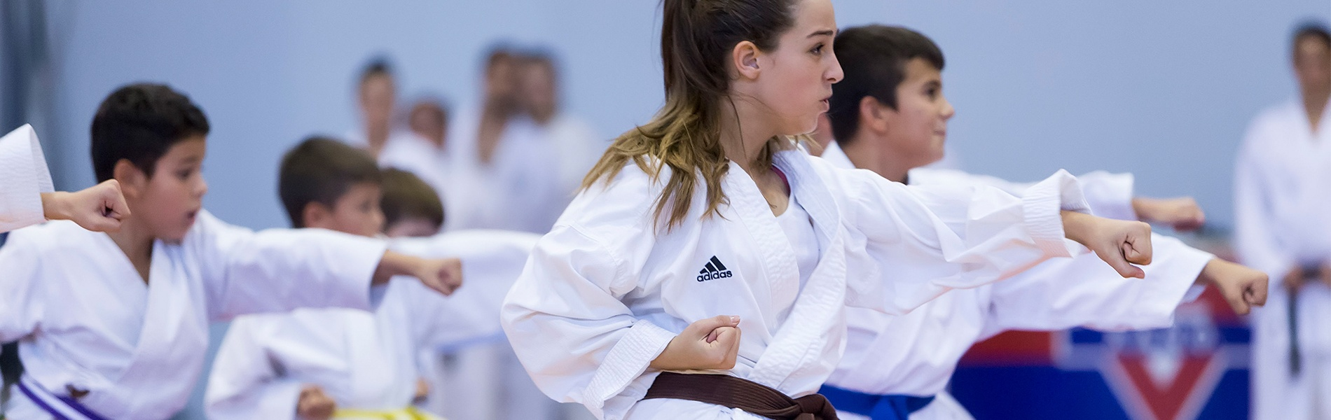 Why Are Seasonal Martial Arts School Campaigns So Effective?